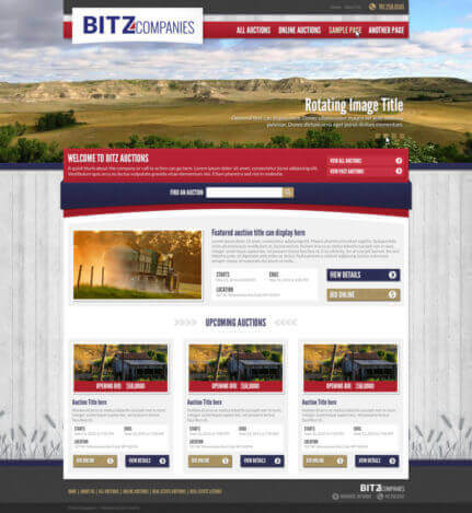 Bitz Companies - Web design for auction business